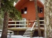 cabin 4, winter 1